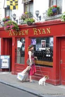 Andrew Ryans Public House - image 3