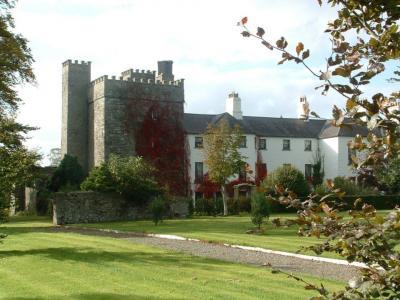 Barberstown Castle - image 1
