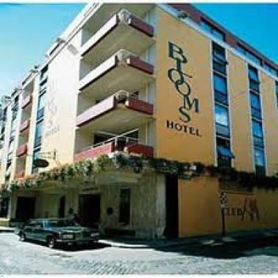 Blooms Hotel - image 1