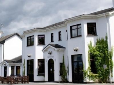 Clonamore House Hotel - image 3