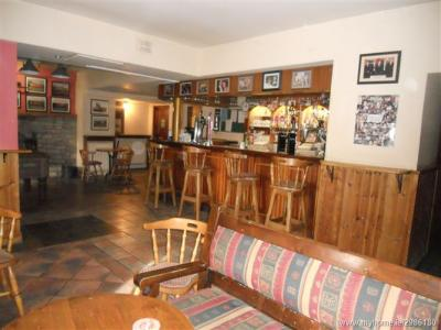 The Cove Bar - image 2
