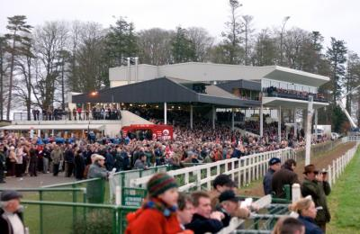 Gowran Park Racecourse - image 2