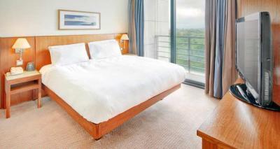 Hilton Dublin Airport Hotel - image 2