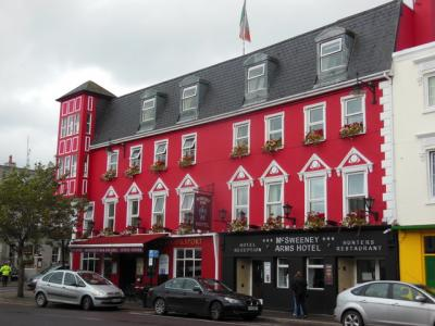 Mcsweeney Arms Hotel - image 2