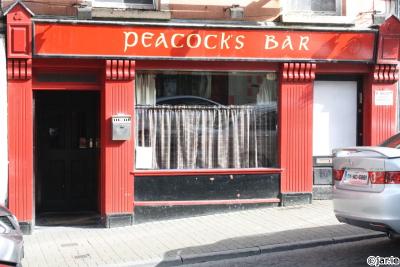 The Peacock Bar - image 1