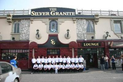 Silver Granite - image 2