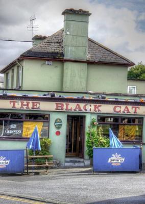 The Black Cat - image 3