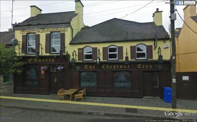 The Chestnut Tree Bar - image 1
