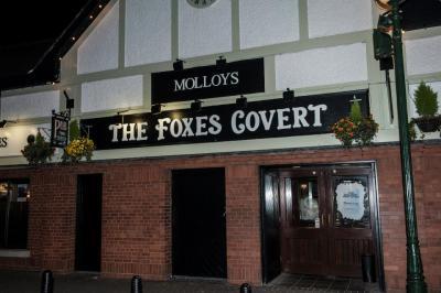 The Foxes Covert / molloy's Pub / fables - image 3