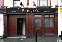 Bergins
