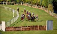 Clonmel Racecourse - image 1