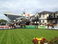 Curragh Racecourse - image 1