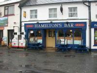 Hamiltons - image 1