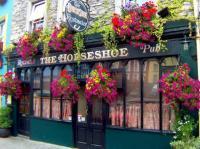 The Horseshoe - image 1