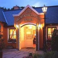 Meadowlands Hotel - image 1