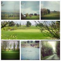 Mountain View Golf Course - image 2