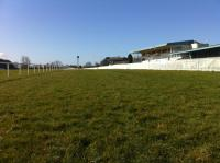Naas Race Course - image 1