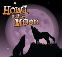 O'dwyers And Howl At The Moon - image 1
