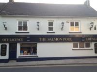 The Salmon Pool - image 1