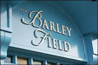 The Barley Field - image 1