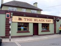 The Black Cat - image 2