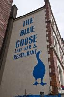 The Blue Goose - image 1