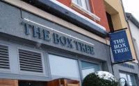 The Box Tree - image 1