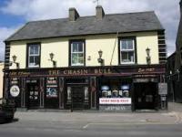 The Chasin Bull - image 1