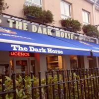 The Dark Horse - image 1