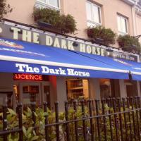 The Dark Horse - image 1