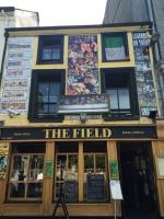The Field - image 1