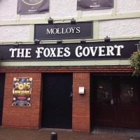 The Foxes Covert / molloy's Pub / fables - image 1