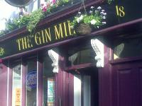 The Gin Mill - image 1