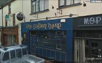 The Golden Harp Bar - image 1