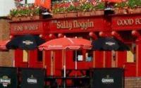 The Sallynoggin Inn - image 1