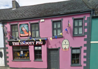 The Snooty Pig - image 1