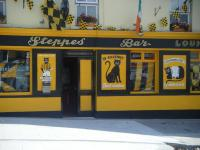 The Steppes Bar - image 1