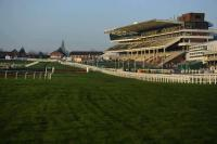 Tipperary Racecourse - image 1