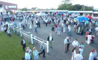 Wexford Racecourse - image 1
